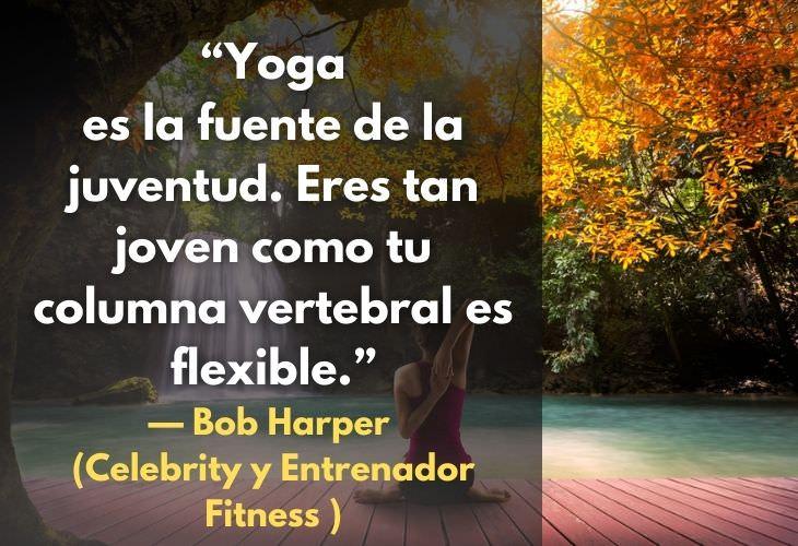citas de yoga fuente salud