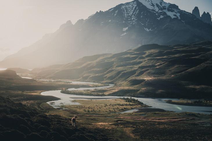 Fotos De La Vida Natural De La Patagonia Montañas