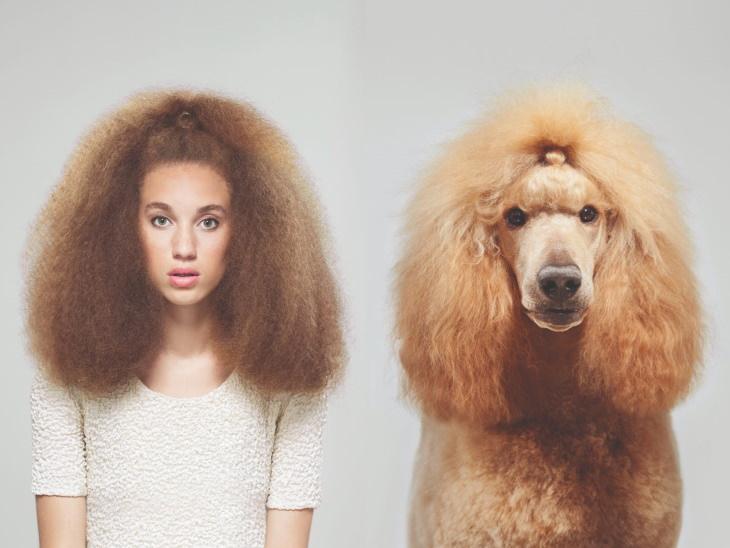 Divertidas Fotos De Perros Que Se Parecen a Sus Dueños chica con cabello esponjado