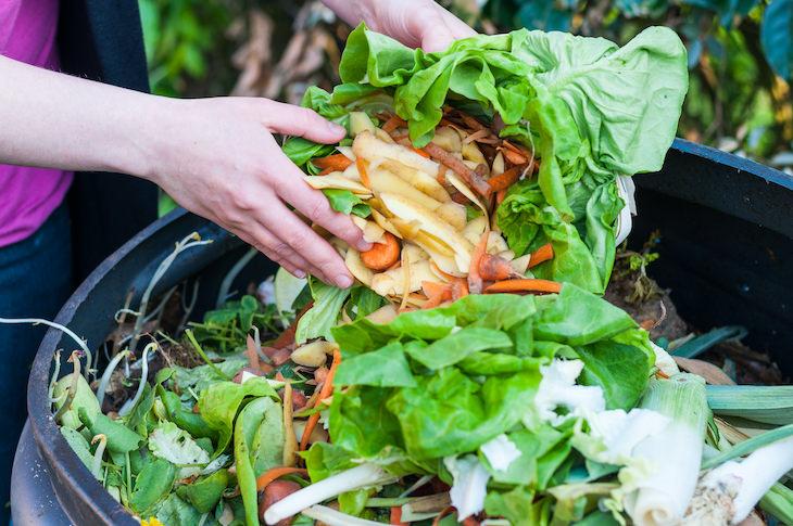 Mitos De Jardineria Que Deben Ser Desmentidos Las pilas de abono huelen mal