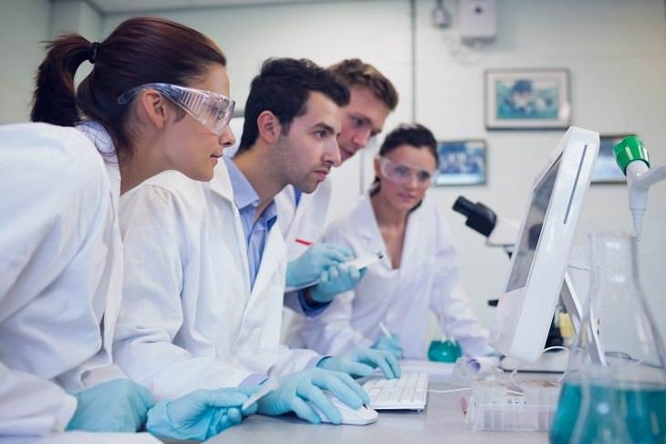 La sensibilidad al gluten proviene de diferentes reacciones del sistema inmunológico