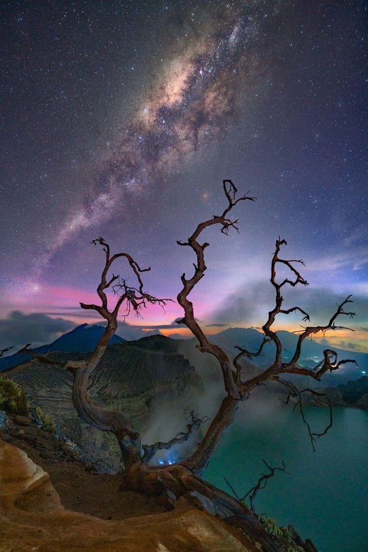 """Asombrosas Fotografías De La Vía Láctea  """"Alrededor de árboles muertos"""" de Gary Bhaztara. Java, Indonesia."""