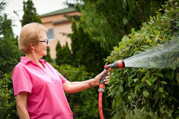 Riega tu jardín con prudencia