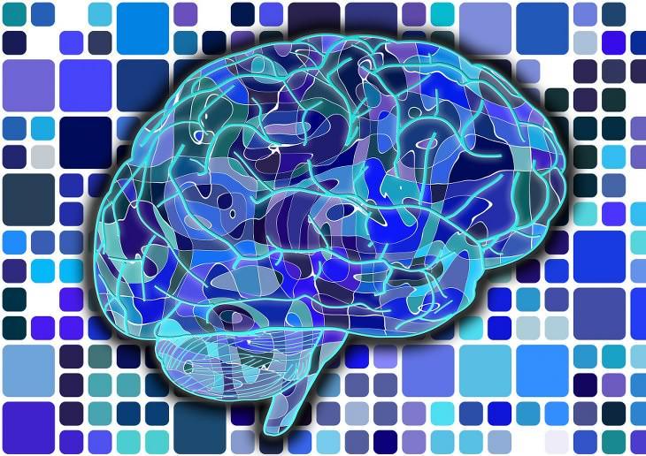 Razones Que Hacen a La Col Un Alimento Milagroso Mantiene tu cerebro sano