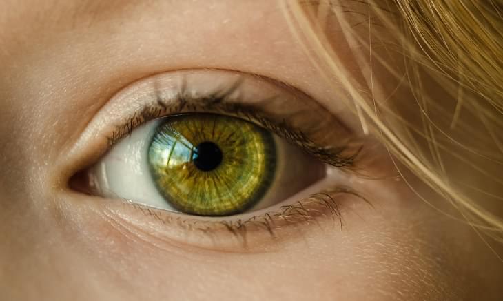 Razones Que Hacen a La Col Un Alimento Milagroso Promueve la buena salud ocular