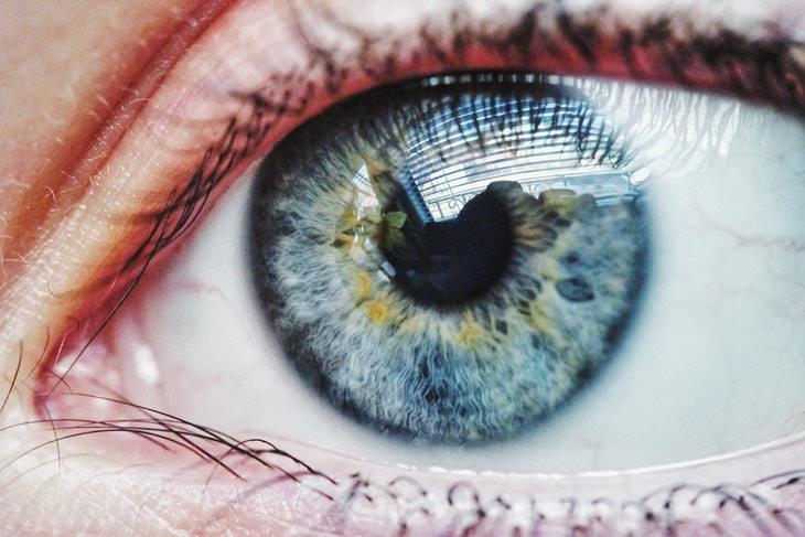 La conexión entre la inteligencia y el tamaño de la pupila