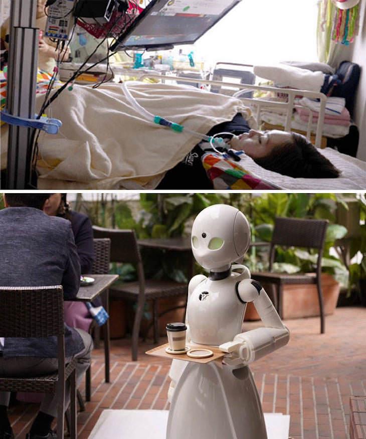 1. Un café en Japón está contratando a personas paralizadas para que controlen los servidores robot y les ayuden a obtener ingresos.