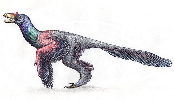 Hechos Han Sido Desmentidos Por La Ciencia Los dinosaurios no parecían grandes lagartos