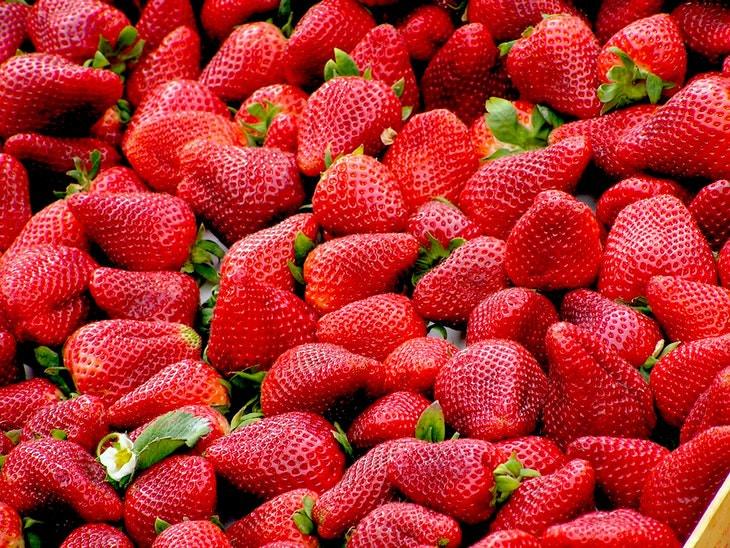 1. Fresas ORGANICAS