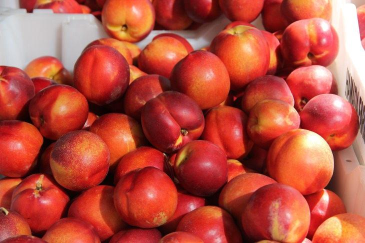 8. Melocotones y nectarinas