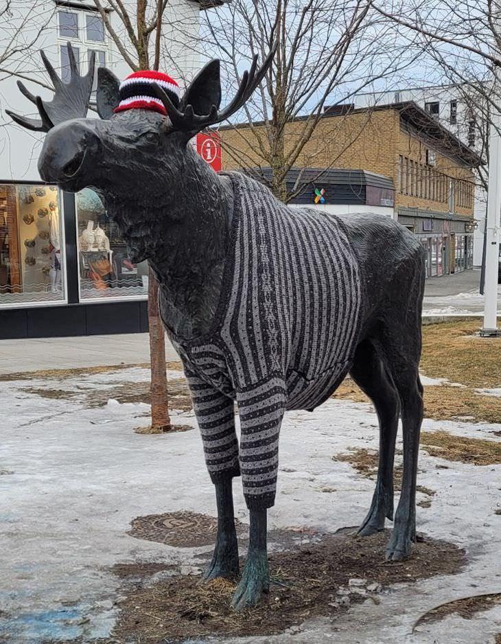 2. Alguien tomó medidas, diseñó y tejió un suéter para la estatua del alce en Brumunddal, Este de Noruega.