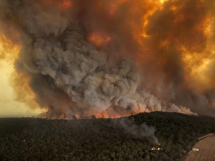 6 Eventos Naturales Que Rompieron Récords El humo que duró 6 meses
