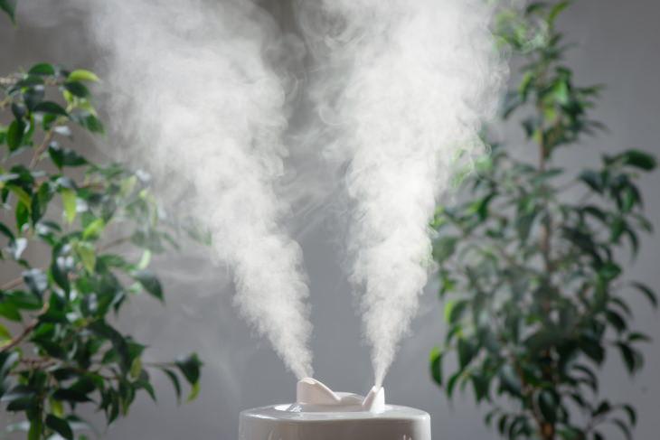 10 Artículos Para El Hogar Que Pueden Dañar Tu Salud Humidificadores de aire