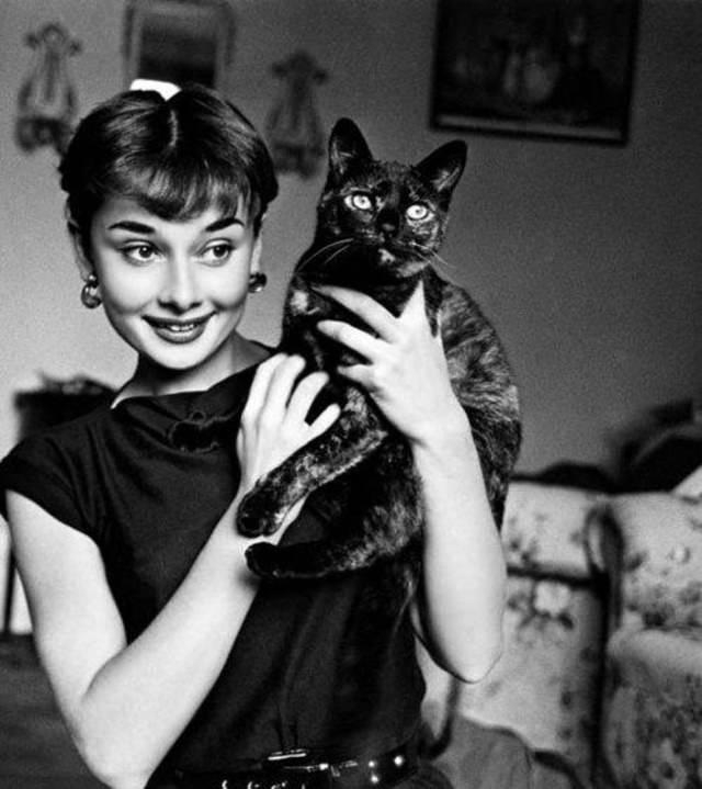 Personajes Famosos y Sus Gatos  Audrey Hepburn