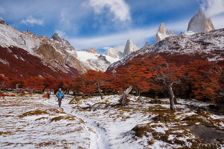 Otoño En La Patagonia Montañas nevadas