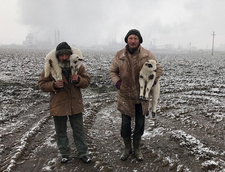"""Ganadores Fotografía iPhone 2021 Gran premio y premio al fotógrafo del año: """"Pastores de Transilvania"""", Istvan Kerekes, filmado con iPhone 7"""