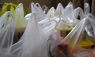 5 Cosas Que En Realidad No Debes Reciclar