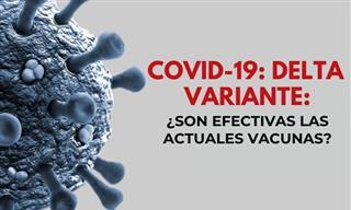 Variante Delta: ¿Qué Tan Efectivas Son Las Vacunas?