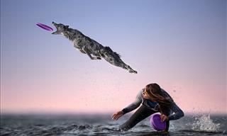 La Magia Del Movimiento Plasmada En 15 Fotografías
