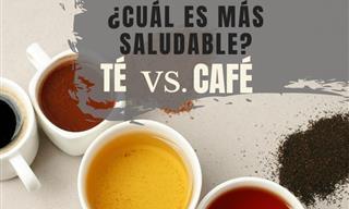 ¿Es El Té Realmente Mucho Mejor Que El Café?