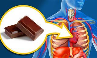 Qué Le Sucede A Tu Cuerpo Después De Comer Chocolate