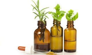Todos Sobre Los Mejores Remedios Naturales Para Tu Salud