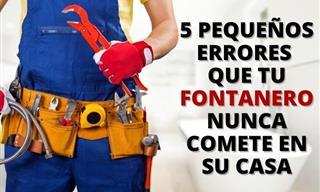 Los Fontaneros Nunca Cometen Estos 5 Errores En Sus Casas