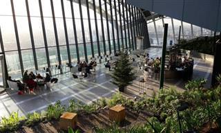 El Espectacular Sky Garden De Londres Ofrece Vistas Impresionantes