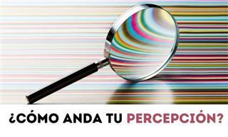 Test: ¿Cómo Anda Tu Percepción Visual?