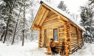 Timelapse De Cabaña de Madera Construida Por Un Hombre