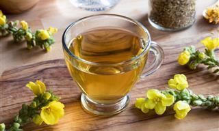Tés Herbales Especiales Para El Asma y Mejorar La Respiración