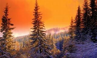 Descubre La Belleza De Bulgaría