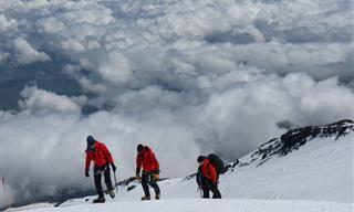 Chiste: Un Político En El Monte Everest
