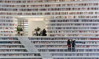 ¿Has Visto Una Biblioteca Tan Impresionante Como Esta?