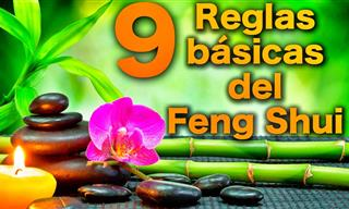 9 Reglas Básicas Del Feng Shui Para Cambiar Tu Casa