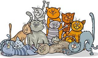 Test: ¿Qué Tanto Sabes De Los Gatos Famosos?