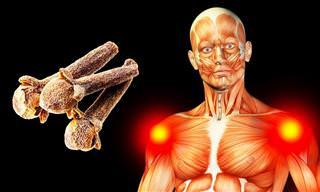 2 Clavos De Olor Al Día, Innumerables Beneficios Para Tu Salud
