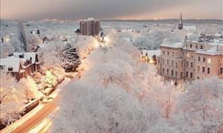 Cuando Cae La Nieve, El Mundo Se Vuelve Mágico