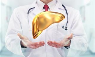 7 Posts Con Todo Lo Que Necesitas Saber Sobre El Hígado