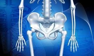 10 Tips Naturales Para Proteger La Salud De Tus Huesos