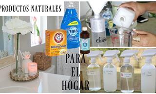 Los Mejores Productos De Limpieza Naturales Para El Hogar