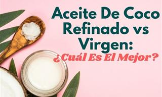 Aceite De Coco Refinado vs Sin Refinar ¿Cuál Es La Mejor Opción?
