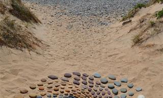 11 Fotografías Maravillosas De Arte Con Piedras En La Playa