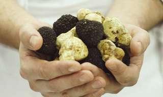 Los 12 Alimentos Más Costosos Del Mundo...