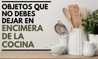Evita Almacenar Estos 9 Artículos En La Encimera De Tu Cocina
