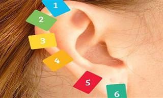 ¿Conoces La Reflexología Auricular Con Pinzas?