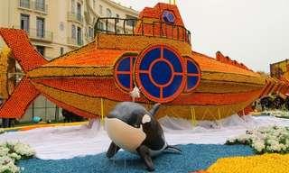 El Festival Francés De Frutos Cítricos 2014