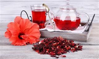 Té de Hibisco, Beneficios, Contraindicaciones y Cómo prepararlo