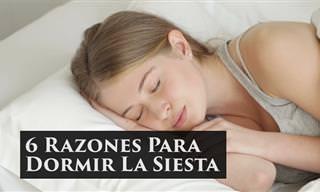 6 Razones Para Dormir La Siesta