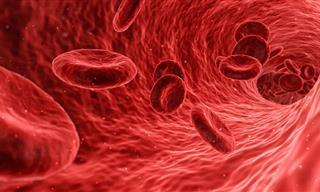 Menos De 50 Personas En Todo El Mundo Tienen Este Tipo De Sangre